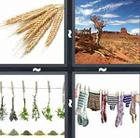 4 Pics 1 Word answers and cheats level 61