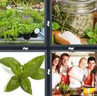 4 Pics 1 Word answers and cheats level 1022
