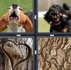 4 Pics 1 Word answers and cheats level 107