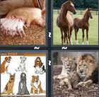 4 Pics 1 Word answers and cheats level 1080