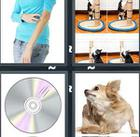 4 Pics 1 Word answers and cheats level 1081