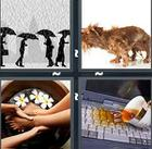 4 Pics 1 Word answers and cheats level 1088