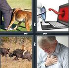 4 Pics 1 Word answers and cheats level 1121