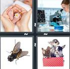 4 Pics 1 Word answers and cheats level 1122