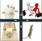 4 Pics 1 Word answers and cheats level 1135