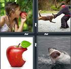 4 Pics 1 Word answers and cheats level 1151