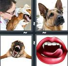 4 Pics 1 Word answers and cheats level 1174