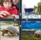 4 Pics 1 Word answers and cheats level 1177