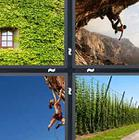 4 Pics 1 Word answers and cheats level 1203
