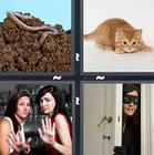 4 Pics 1 Word answers and cheats level 1219