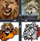 4 Pics 1 Word answers and cheats level 1316