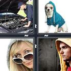 4 Pics 1 Word answers and cheats level 1326