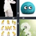 4 Pics 1 Word answers and cheats level 1337