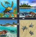 4 Pics 1 Word answers and cheats level 1352