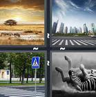 4 Pics 1 Word answers and cheats level 1353