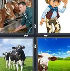4 Pics 1 Word answers and cheats level 1370