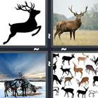 4 Pics 1 Word answers and cheats level 1371