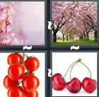 4 Pics 1 Word answers and cheats level 1459
