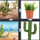 4 Pics 1 Word answers and cheats level 1472