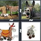 4 Pics 1 Word answers and cheats level 1497