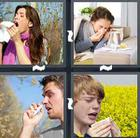 4 Pics 1 Word answers and cheats level 1511