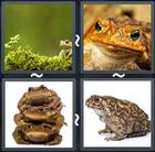 4 Pics 1 Word answers and cheats level 1679