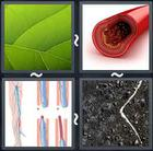 4 Pics 1 Word answers and cheats level 1681