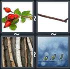 4 Pics 1 Word answers and cheats level 1700