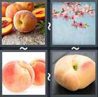 4 Pics 1 Word answers and cheats level 2029