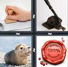 4 Pics 1 Word answers and cheats level 204