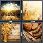 4 Pics 1 Word answers and cheats level 2043