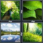 4 Pics 1 Word answers and cheats level 2099