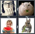 4 Pics 1 Word answers and cheats level 2112