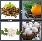 4 Pics 1 Word answers and cheats level 2125