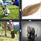 4 Pics 1 Word answers and cheats level 229
