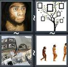 4 Pics 1 Word answers and cheats level 2329