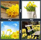 4 Pics 1 Word answers and cheats level 2331
