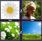4 Pics 1 Word answers and cheats level 2332