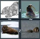 4 Pics 1 Word answers and cheats level 2336