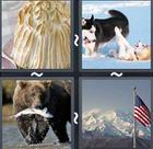 4 Pics 1 Word answers and cheats level 2376