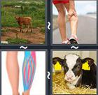 4 Pics 1 Word answers and cheats level 2401