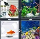 4 Pics 1 Word answers and cheats level 2417