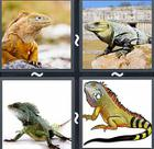 4 Pics 1 Word answers and cheats level 2419