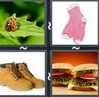4 Pics 1 Word answers and cheats level 2444