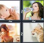 4 Pics 1 Word answers and cheats level 2467