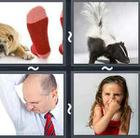4 Pics 1 Word answers and cheats level 2496