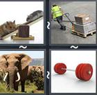 4 Pics 1 Word answers and cheats level 2506