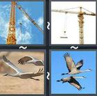 4 Pics 1 Word answers and cheats level 2518