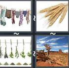 4 Pics 1 Word answers and cheats level 2519