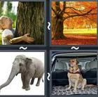 4 Pics 1 Word answers and cheats level 2527